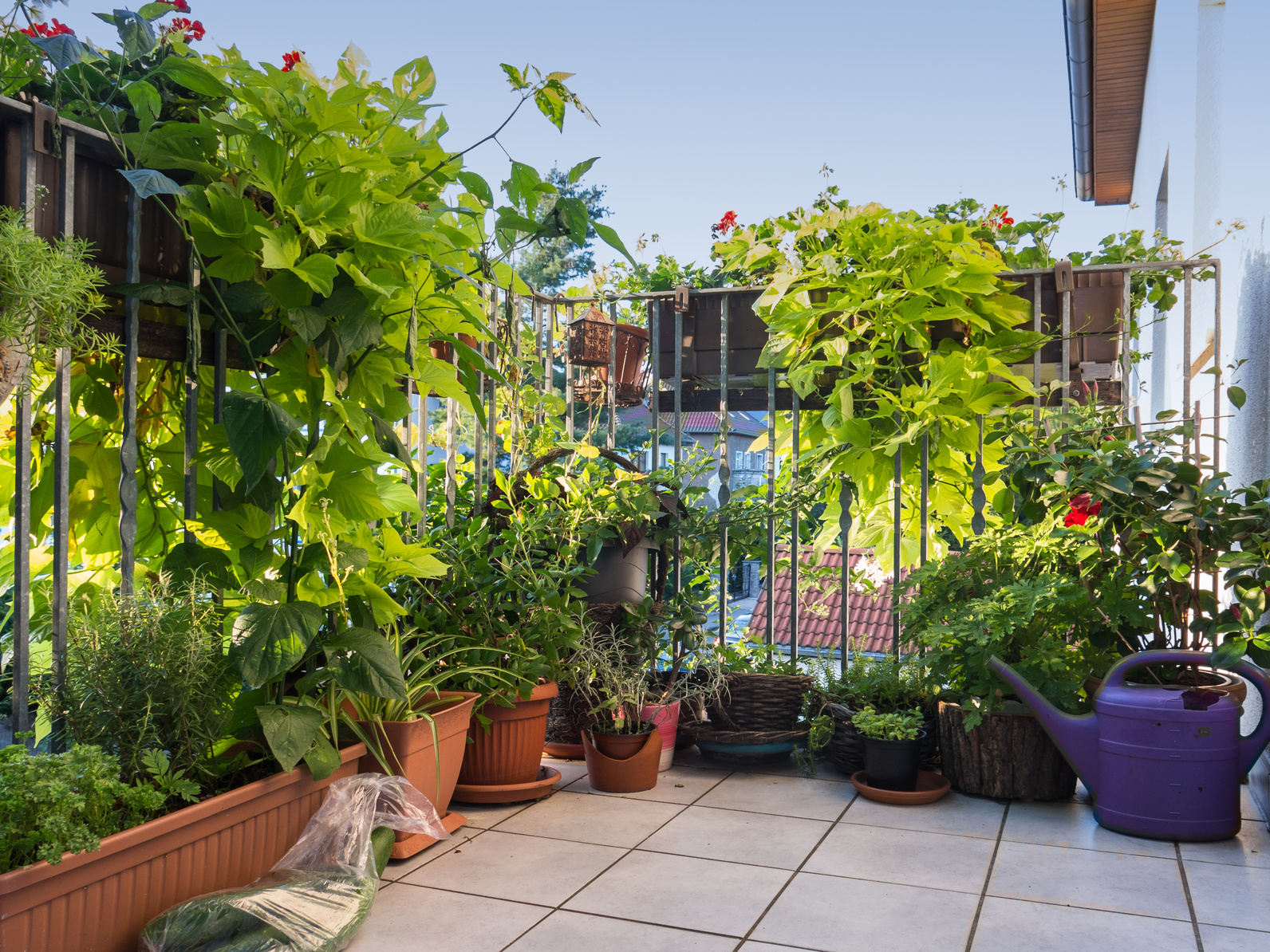 Das Balkon Wohnzimmer Für Den Sommer; Ankenevermann/ Fotolia.com